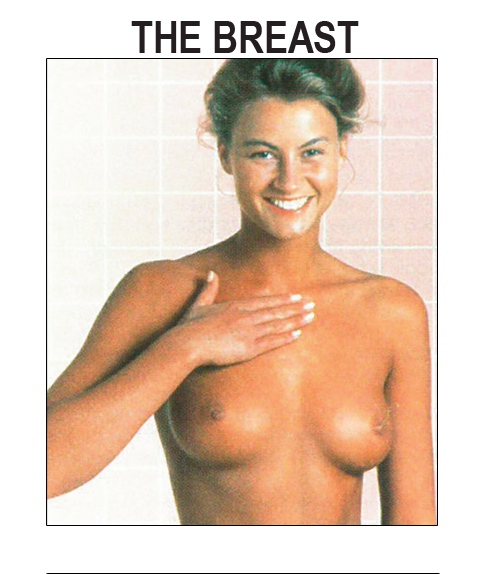 The-breast1